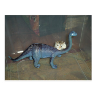 Hamster on a dinosaur postcard