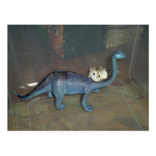 Hamster on a dinosaur postcard