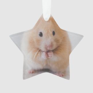 hamster ornament