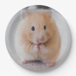 hamster paper plate