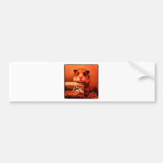 Hamster photo design bumper sticker