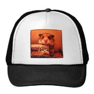 Hamster photo design cap