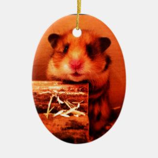 Hamster photo design ceramic oval decoration