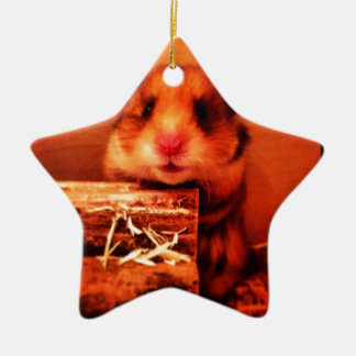 Hamster photo design christmas ornament