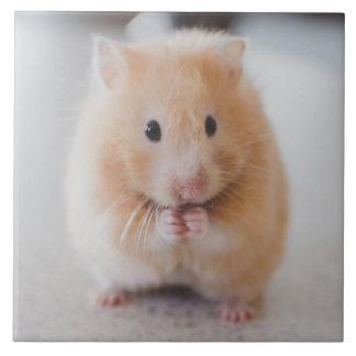 hamster tile