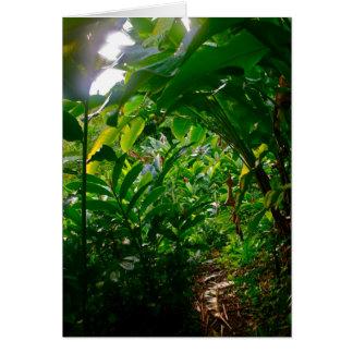 Hana Cabana Foliage Greeting Card