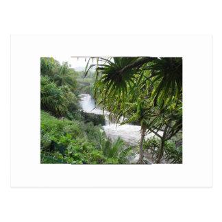 Hana, MAUI Postcard
