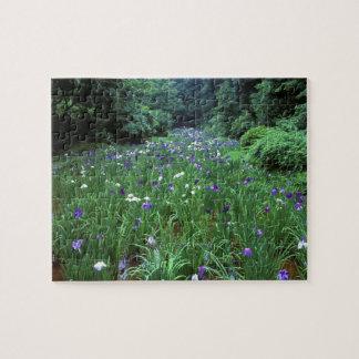 Hana Shobu (Japanese Water Iris), Meiji Shrine, Jigsaw Puzzle