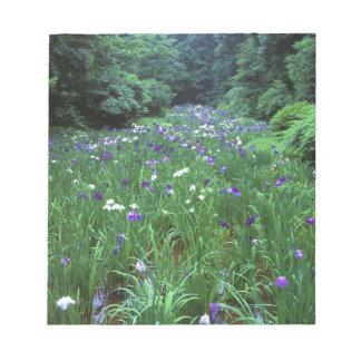 Hana Shobu (Japanese Water Iris), Meiji Shrine, Notepad