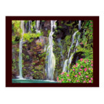 Hana Waterfalls Postcard