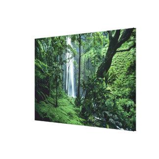 Hanakapiai Falls along the Na Pali Coast, Kauai, Canvas Print