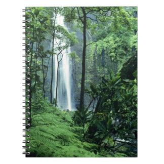 Hanakapiai Falls along the Na Pali Coast, Kauai, Notebooks
