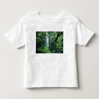 Hanakapiai Falls along the Na Pali Coast, Kauai, T-shirts