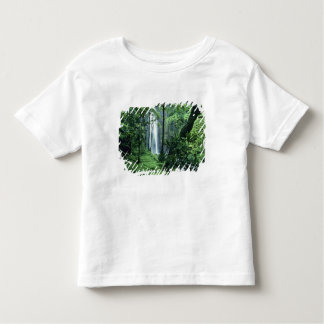 Hanakapiai Falls along the Na Pali Coast, Kauai, Toddler T-Shirt