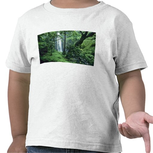 Hanakapiai Falls along the Na Pali Coast, Kauai, T-shirt