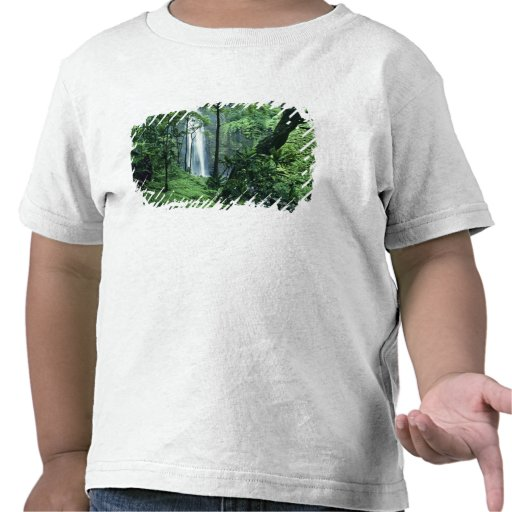 Hanakapiai Falls along the Na Pali Coast, Kauai, T Shirts