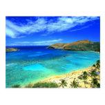 Hanauma Bay Beach Aloha!