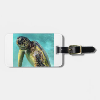 Hanauma Bay - Hawaii Green Sea Turtles Luggage Tag