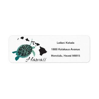 Hanauma Bay Hawaii Turtle
