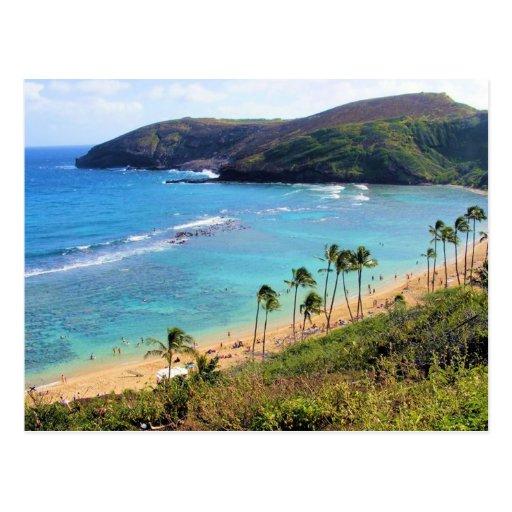 Hanauma Bay, Honolulu, Oahu, Hawaii View Post Cards