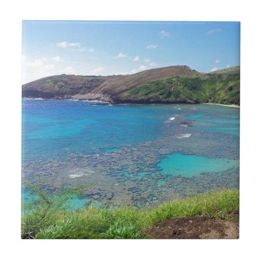Hanauma Bay Oahu Hawaii Tile