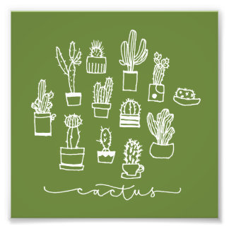 Hand Drawing Cactus Collage Photograph