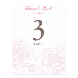 Hand drawn roses table number pink post cards