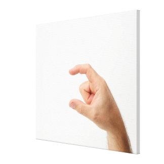 Hand Holding, Empty Canvas Print