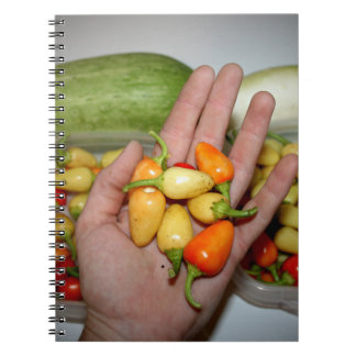 hand holding hot peppers food image spiral note book
