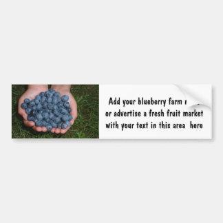 Handful of Fresh Blueberries Bumper Sticker