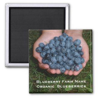 Handful of Fresh Blueberries Magnet
