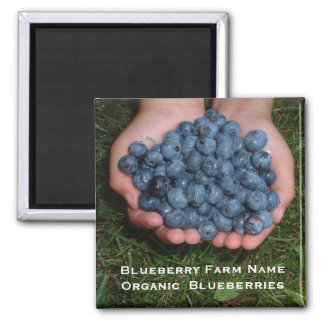 Handful of Fresh Blueberries Square Magnet