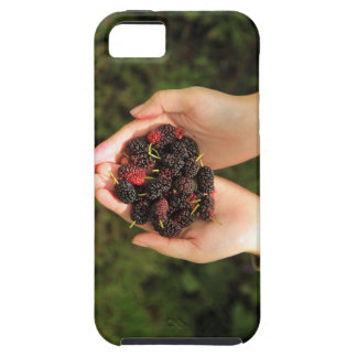 Handful of Mulberry Berries Fresh and Sweet iPhone 5 Covers