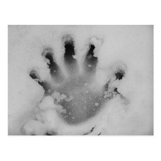 Handprint In The Snow Postcard