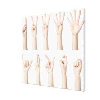 Hands showing Chinese way of counting Canvas Print
