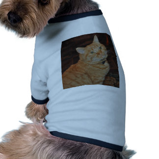 HANDSOME CAT DOG TSHIRT