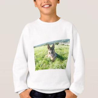 Handsome German Shepherd Dog Sweatshirt