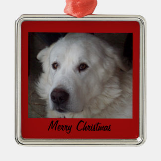 Handsome Great Pyrenees Dog Silver-Colored Square Decoration