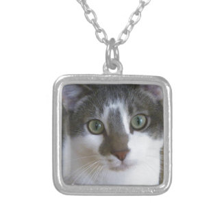 Handsome Grey and White cat Silver Plated Necklace
