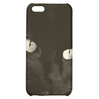 Handsome Prince iPhone 5C Cases