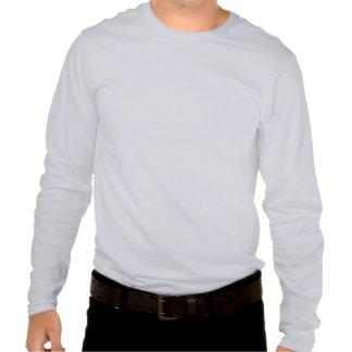 Hanes Nano Long Sleeve T-Shirt Deep ASH Blank