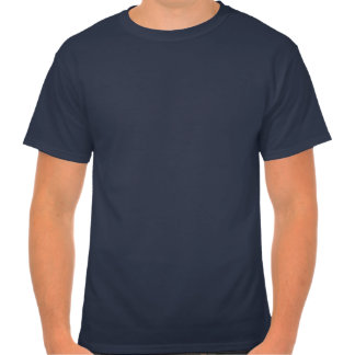 Hanes T-Shirt Because it's there
