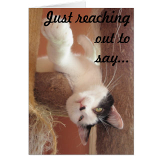 Hang in there! Cat Greeting Card