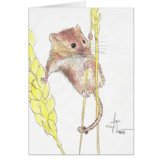 Hang In There, Dormouse! Greeting Card