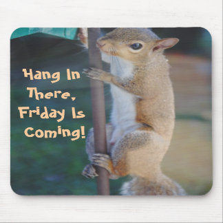 Hang in There, Friday is Coming, Squirrel Mousepad