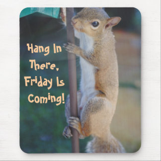 Hang in There Friday is Coming Squirrel Mousepad