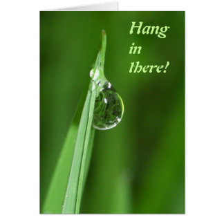 Hang in there - Green grass and water droplet Greeting Card