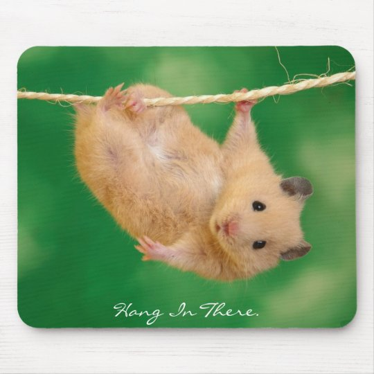 Hang in There Hamster Mouse Mat
