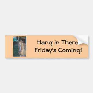 Hang in There Squirrel Bumper Sticker