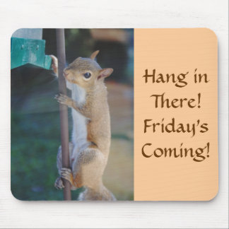 Hang in There, Squirrel on Bird Feeder Mouse Mat
